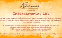 intercammini lab