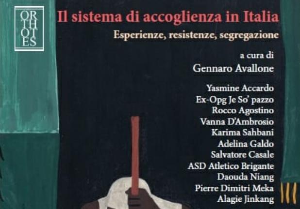 dettaglio libro il sistema di accoglienza in italia